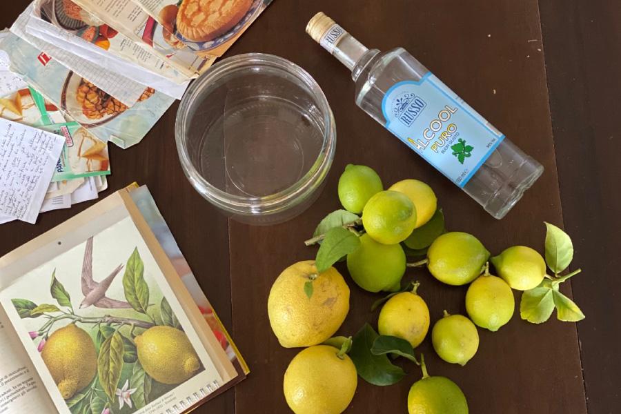 ricetta limoncello di nonna maria